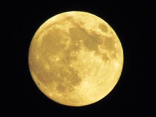 満月の道.jpg